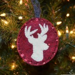 7th Day of Christmas – Rudolph the White Stag Reindeer