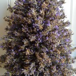 Lavender tower on hertoolbelt.com