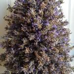 Lavender tower on hertoolbelt.com
