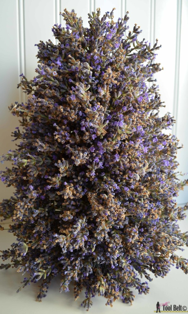 Lavender tower - enjoy the wonderful aroma of your lavender in a unique display on hertoolbelt.com