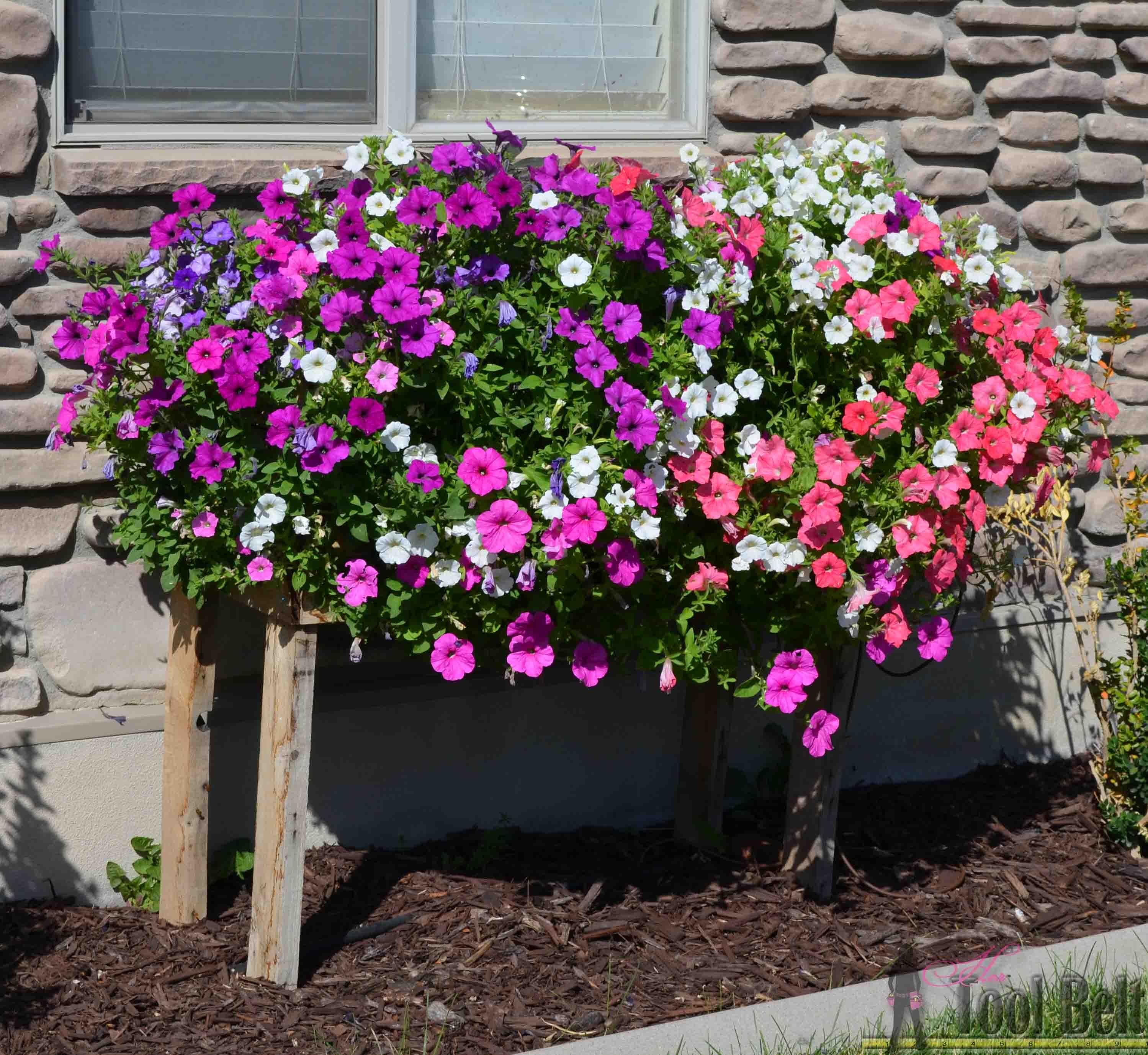 4 June 22 cascading flower pallet box