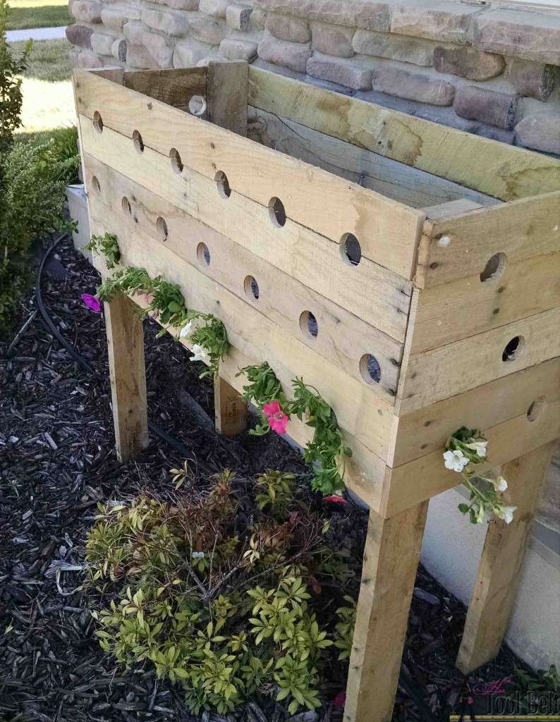 her tool belt cascading flower pallet planter box