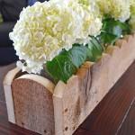 Scallop planter box