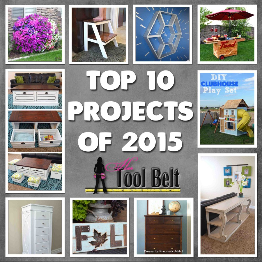 Top 10 2015 hertoolbelt