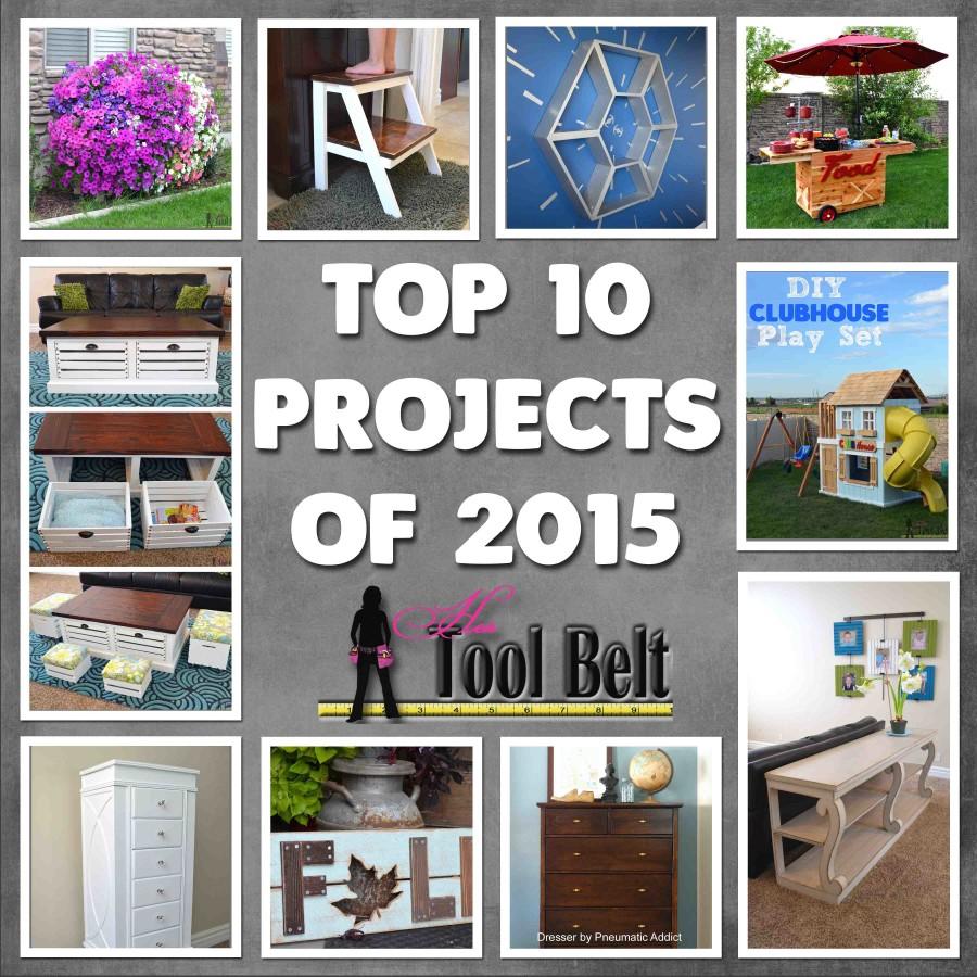 Top 10 2015 hertoolbelt