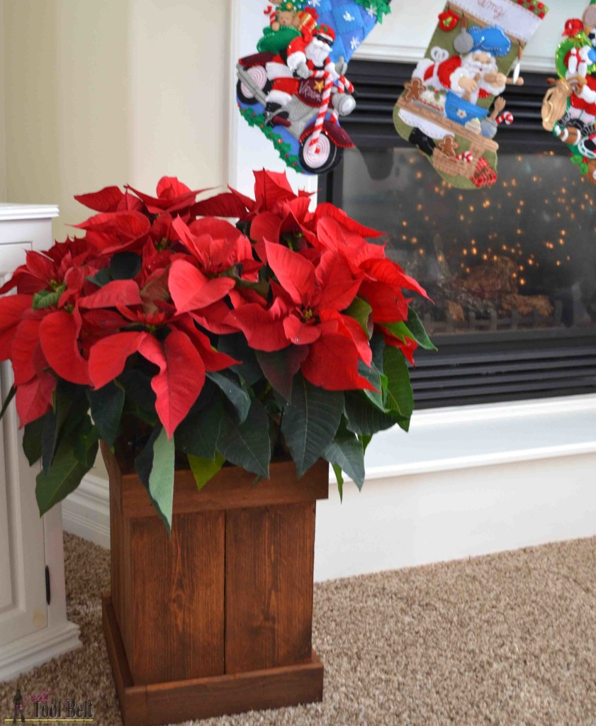 Ditch the gold foil wrapper and build a simple cedar poinsettia box.