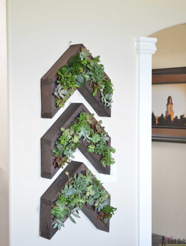 Have a narrow wall to fill? Add a unique vertical succulent planter in a 3 arrow shape with lots of cool texture and color.