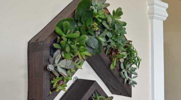 Arrow Vertical Succulent Planter