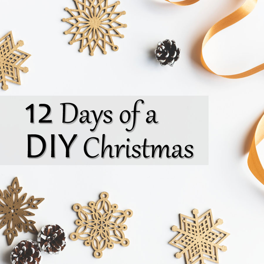 Sleigh rides wood sign her tool belt hi and welcome to the first day of the 12 days of a diy christmas ive teamed up with 11 builder friends to bring you 12 fun woodworking projects solutioingenieria Image collections