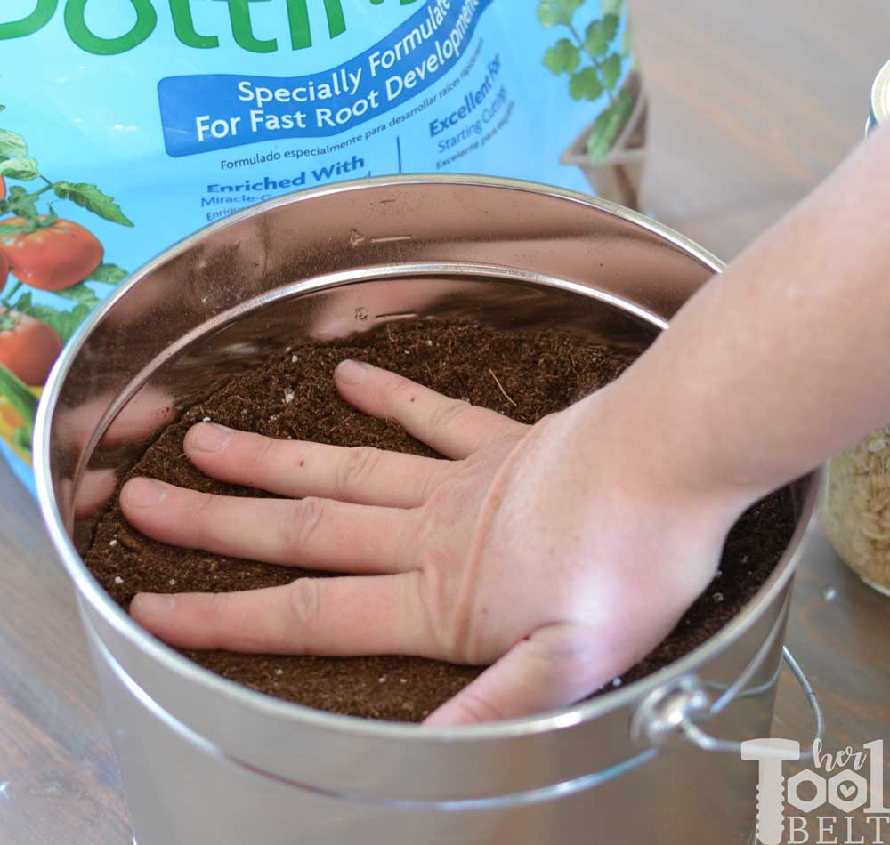 Easter Egg Decor Compact The Dirt