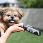 Dremel Pet Grooming Kit Review